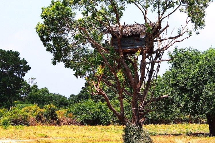 sri-lanka-christi-tours-8n-9d-tour-village-tour